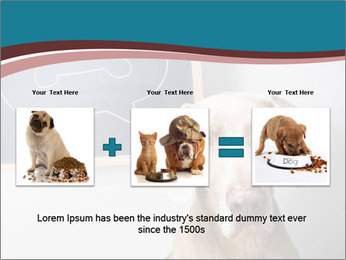 Hungry Dog PowerPoint Template - Slide 22