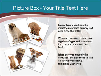 Hungry Dog PowerPoint Template - Slide 23