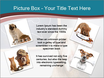 Hungry Dog PowerPoint Template - Slide 24