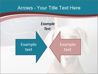 Hungry Dog PowerPoint Template - Slide 90
