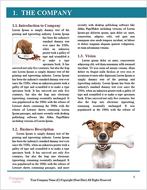 0000090194 Word Template - Page 3