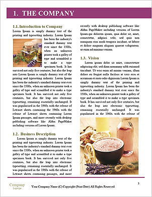 0000090206 Word Template - Page 3