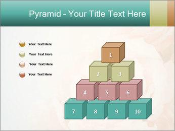 Cream Roses PowerPoint Template - Slide 31