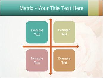 Cream Roses PowerPoint Template - Slide 37