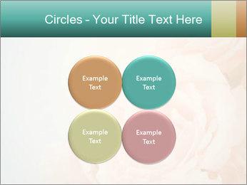 Cream Roses PowerPoint Template - Slide 38