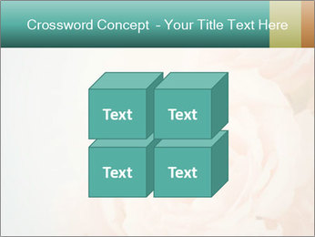 Cream Roses PowerPoint Template - Slide 39
