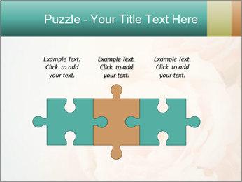 Cream Roses PowerPoint Template - Slide 42