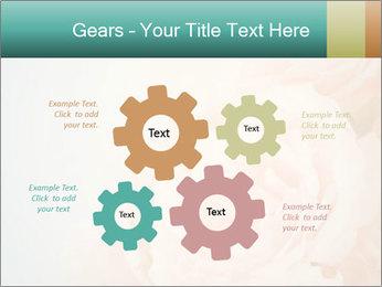Cream Roses PowerPoint Template - Slide 47