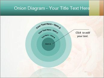 Cream Roses PowerPoint Template - Slide 61