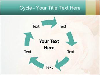 Cream Roses PowerPoint Template - Slide 62