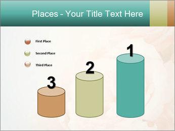 Cream Roses PowerPoint Template - Slide 65