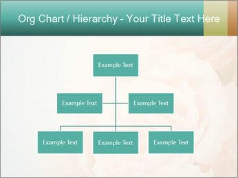 Cream Roses PowerPoint Template - Slide 66
