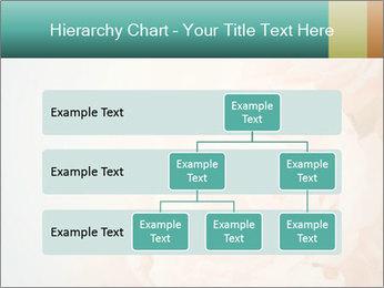 Cream Roses PowerPoint Template - Slide 67
