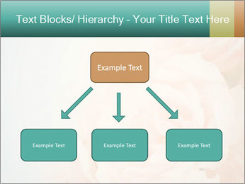 Cream Roses PowerPoint Template - Slide 69