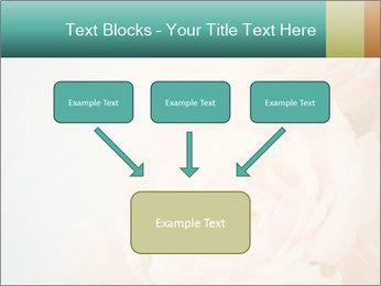Cream Roses PowerPoint Template - Slide 70