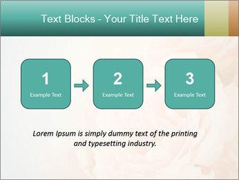 Cream Roses PowerPoint Template - Slide 71