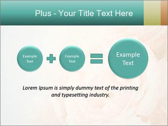 Cream Roses PowerPoint Template - Slide 75