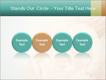 Cream Roses PowerPoint Template - Slide 76