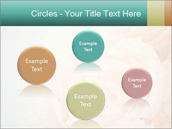 Cream Roses PowerPoint Template - Slide 77