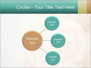 Cream Roses PowerPoint Template - Slide 79