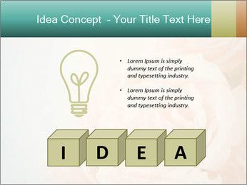 Cream Roses PowerPoint Template - Slide 80