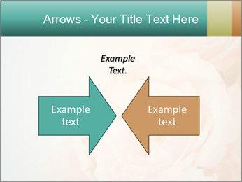 Cream Roses PowerPoint Template - Slide 90