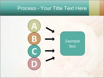 Cream Roses PowerPoint Template - Slide 94