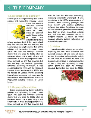 0000090207 Word Template - Page 3