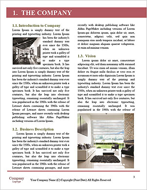 0000090210 Word Template - Page 3