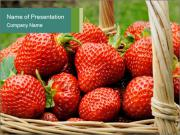 Ripe Strawberry PowerPoint Templates