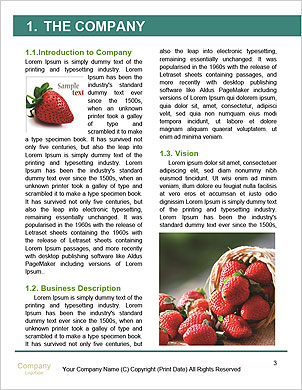 0000090211 Word Template - Page 3
