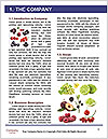 0000090212 Word Template - Page 3