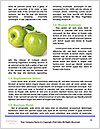 0000090215 Word Templates - Page 4