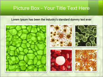 Cell green background PowerPoint Template - Slide 19