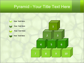 Cell green background PowerPoint Template - Slide 31