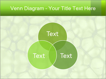 Cell green background PowerPoint Template - Slide 33
