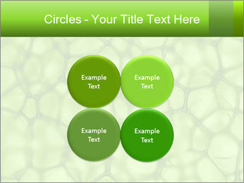 Cell green background PowerPoint Template - Slide 38