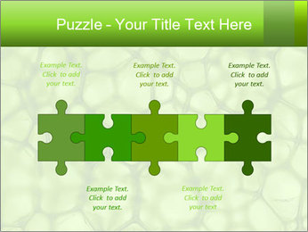 Cell green background PowerPoint Template - Slide 41