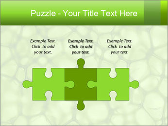 Cell green background PowerPoint Template - Slide 42