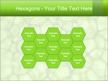 Cell green background PowerPoint Template - Slide 44