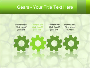 Cell green background PowerPoint Template - Slide 48