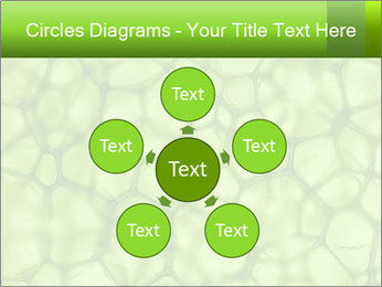 Cell green background PowerPoint Template - Slide 78