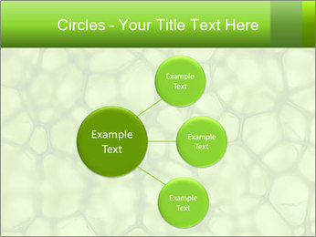 Cell green background PowerPoint Template - Slide 79