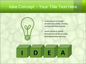 Cell green background PowerPoint Template - Slide 80