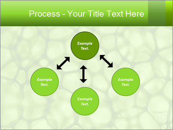 Cell green background PowerPoint Template - Slide 91