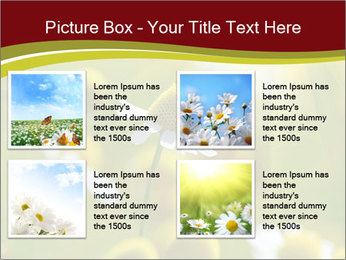Chamomile medical PowerPoint Template - Slide 14
