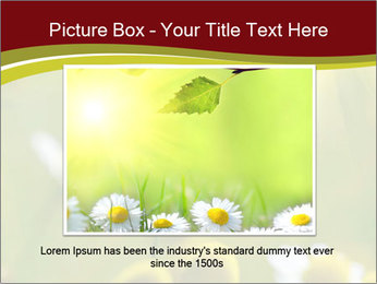 Chamomile medical PowerPoint Template - Slide 15