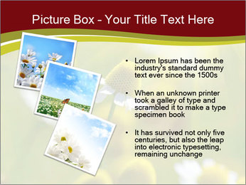 Chamomile medical PowerPoint Template - Slide 17