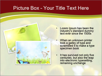 Chamomile medical PowerPoint Template - Slide 20