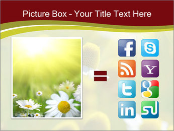 Chamomile medical PowerPoint Template - Slide 21